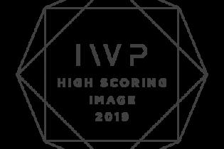 International Wedding Photographer of the Year Awards competition badge
